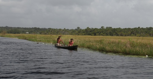A man paddles his boat along a marsh in late March on the Pomeroon River in Guyana. (CNS/Bob Roller)